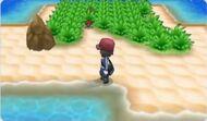Kalm en una isla
