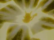 EP019 Pikachu de Ash usando impactrueno