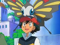 Archivo:EP545 Beautifly en la cabeza de Ash.png