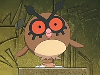 Archivo:EP455 Hoothoot.png