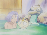 EP331 Fuente Psyduck.png