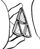 Archivo:Medalla Lluvia (Manga).png