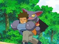 Archivo:EP563 Brock cargando con Gliscor.png