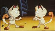 P01 Meowth y su clon.jpg