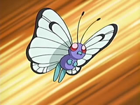 Butterfree de Jeremy/Luciano