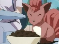 Archivo:EP028 Vulpix comiendo.png