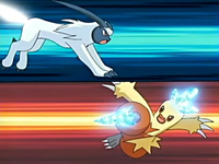 Archivo:EP459 Absol VS Combusken.png