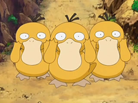 Archivo:EP556 Psyduck.png