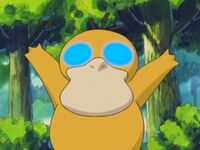 EH05 Psyduck