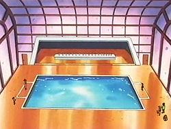 Campo de batalla del Gimnasio de Mikan en el anime
