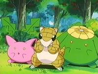 Archivo:EP235 Pokémon del bosque.png
