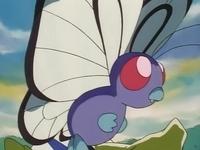 Archivo:EP004 Butterfree de Ash.png