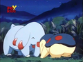 EP248 Phanpy con Cyndaquil.png