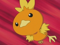 Archivo:EP334 Torchic.png