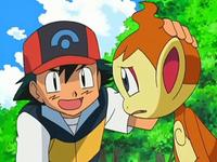 Archivo:EP550 Ash calmando a Chimchar.png