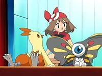 Archivo:EP464 May, Beautifly y Combusken.png