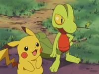 Archivo:EP319 Pikachu y Treecko.jpg