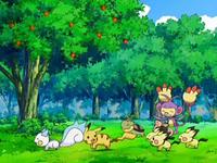 Archivo:EP553 Pokémon jugando.png