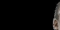 Barion Raner