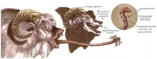 Archivo:Bantha tongue.jpg
