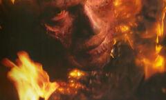 Anakin en llamas.jpg