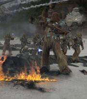 Wookie battle.jpg