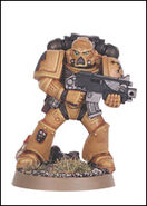 M1860625 Knights Gryphonne