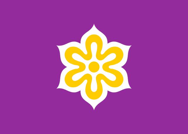 File:FEST flag.png