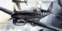 Academy 1/72 Curtiss P-40M/N Warhawk