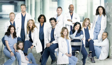 Grey's anatomy temporada 13.jpg