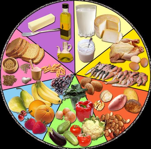 Archivo:Alimentos.png