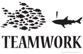 Teamwork wikia.jpg