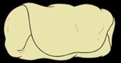 3.Burritodo