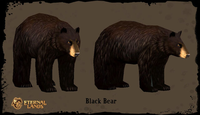 File:Creature Black Bear.jpg