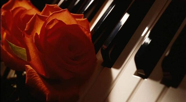 File:Nocturne - Piano and Rose.jpg