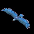 Lightning Hawk