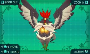 Master Bird