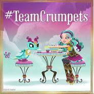Team Crumpets