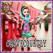 Facebook - Raven wants to save Courtly