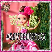 Facebook - Briar wants to save Courtly