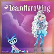 Facebook - Team Herowing