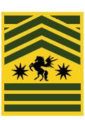 File:Gruenor sergeant major.png