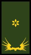 File:Gruenor 2lieutenant.png