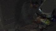 Vlcsnap-2015-09-03-22h02m27s80