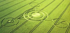 The Crop Circles