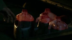 The Demon Blood (Supernatural)