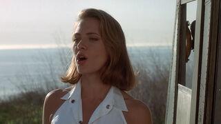 Michelle Rodham Huddleston (played by Brenda Bakke) Hot Shots 2 98