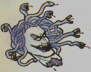 Medusa CV