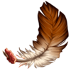 Ds item harpyfeather