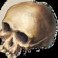 Ds item skull.png